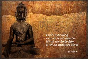 Buddha Quote V