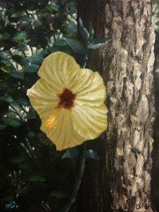 Montrose Spring
