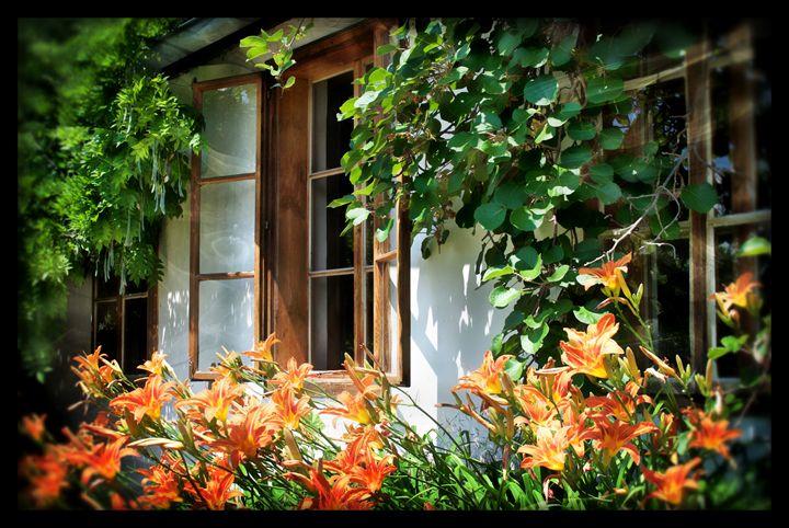 Summer Cottage - D. van Doorn