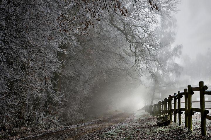 Frosty Trail - D. van Doorn