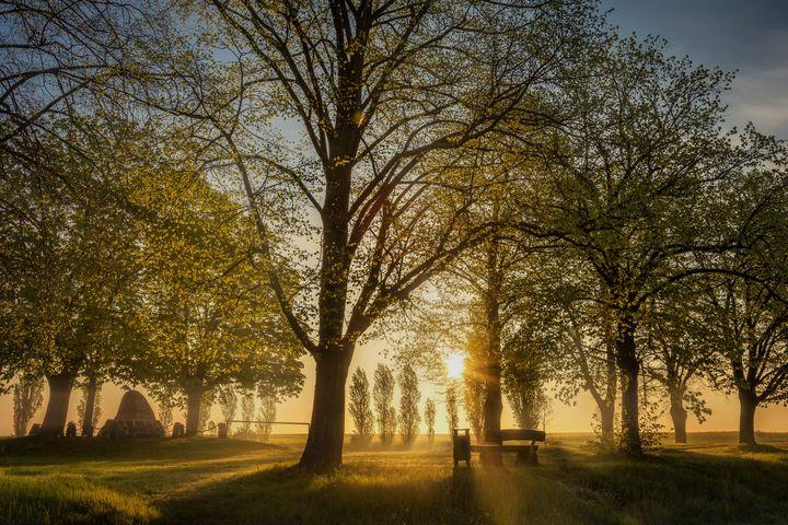Park Sunrise - D. van Doorn