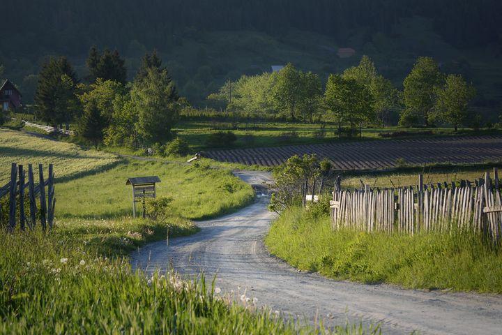 Countryside - D. van Doorn