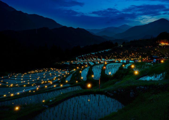 Evening Rice Fields - D. van Doorn