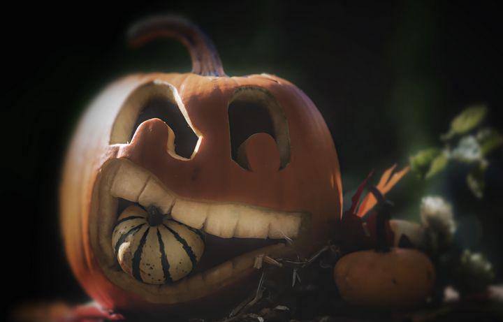 Pumpkin - D. van Doorn