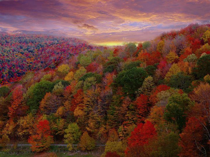 Autumn Perfection - D. van Doorn