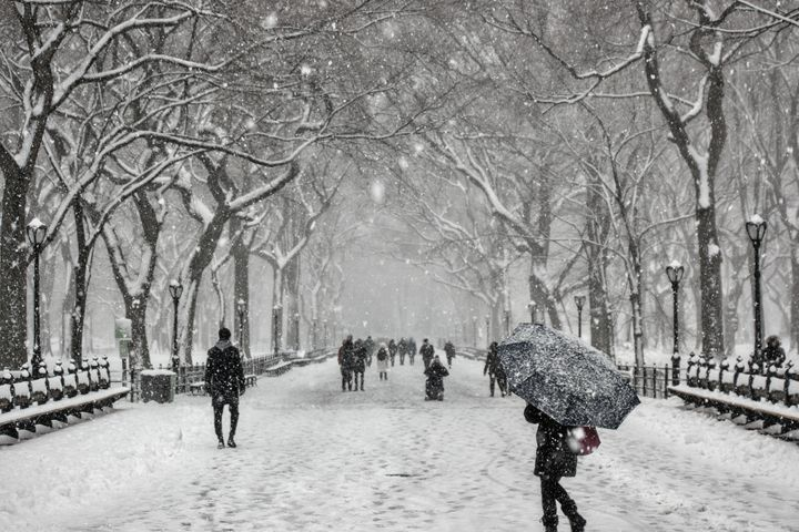 New York Winter - D. van Doorn