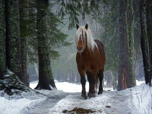 Forest Horse