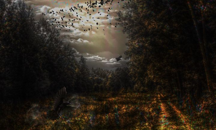 Sky Of Crows - Sky F