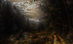 Sky Of Crows - Oddtism