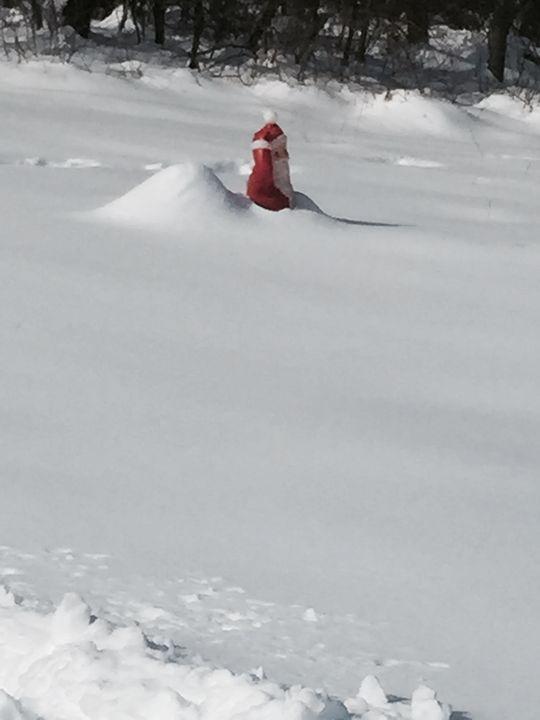 Santa Hates Snow - FotoLuv