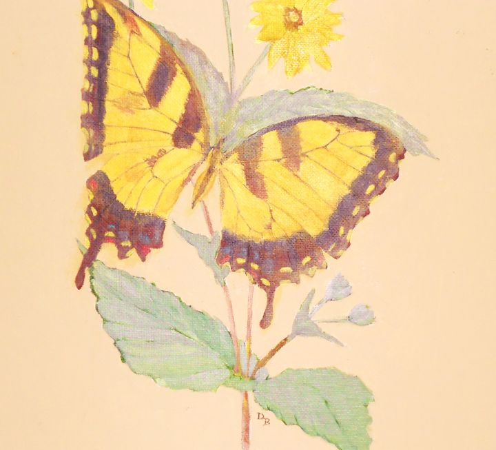 Yellow Butterfly - Dan Bader