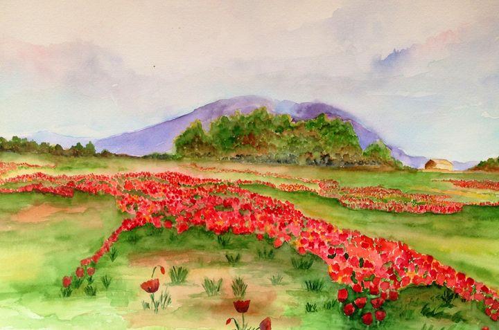 poppy field - Mahjabin