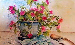 Gardening-Geraniums - Mahjabin