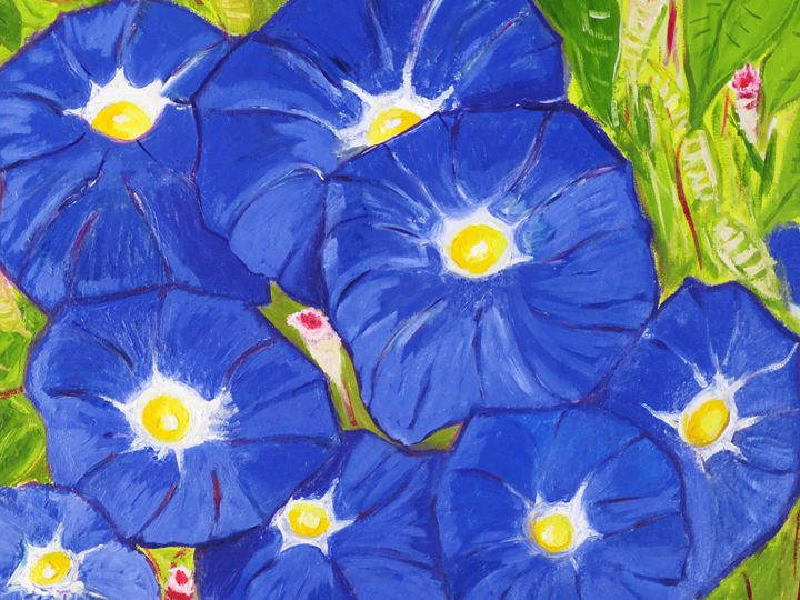blue morning glory - L'Orangerie