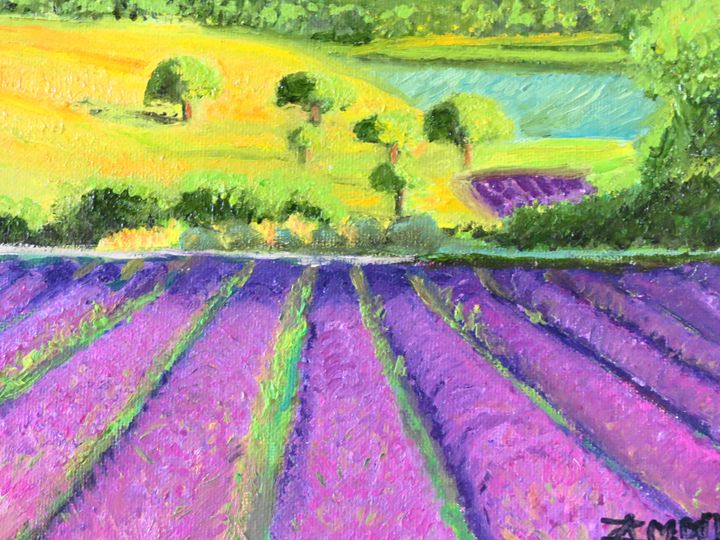 lavender field of dream - L'Orangerie