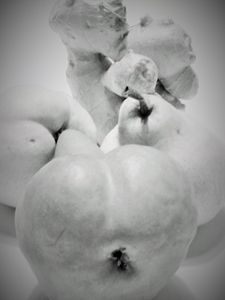Pear and ginger forms