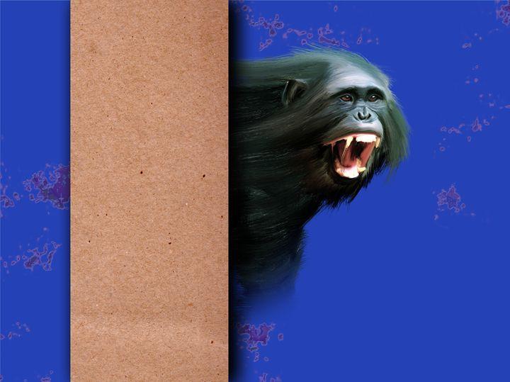 Portrait of a gorilla male - Lee went