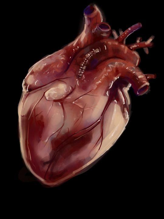 Heart - Katie irwin
