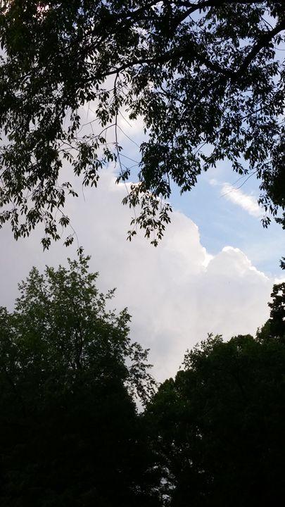 Storms On The Horizon - Dreamweaver Designs