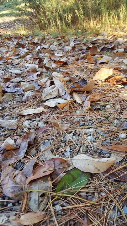 Needles and Leaves - Dreamweaver Designs