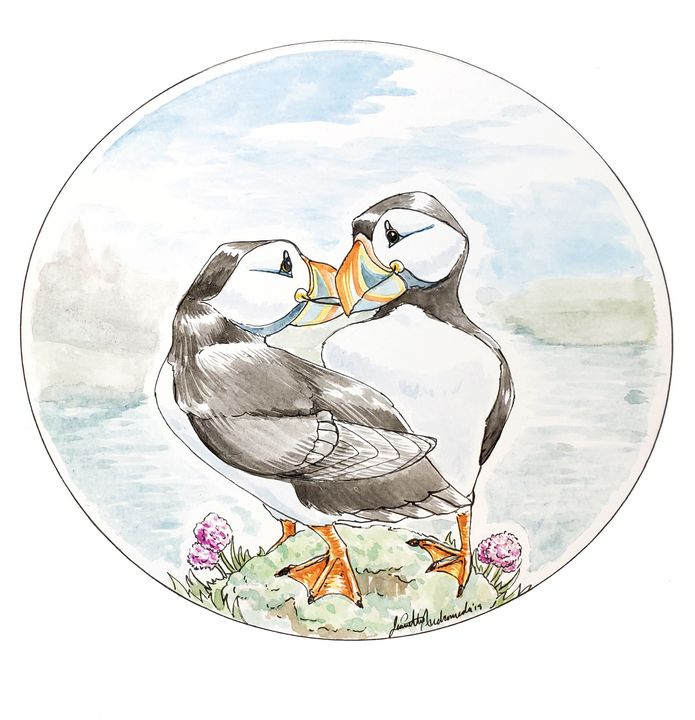 Project Puffin - Jeanette Andromeda