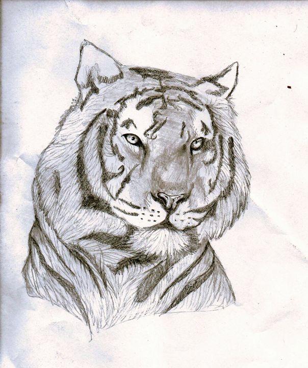Graphite Tiger - Michelle Faust