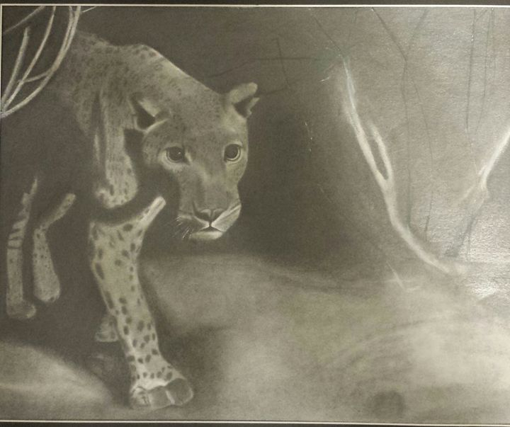 Leopard - Joseph Creative