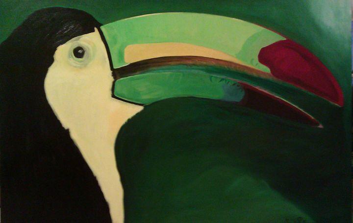 toucan - Joseph Creative