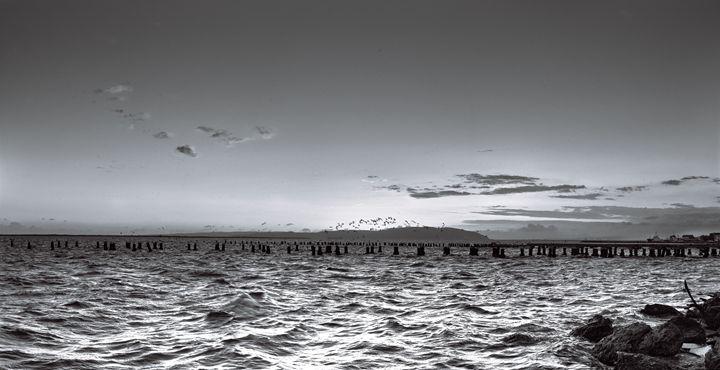 Kingston Waterfront in Black & White - Ulrick Lawrence