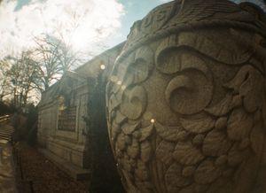 Central Park, Fisheye lens