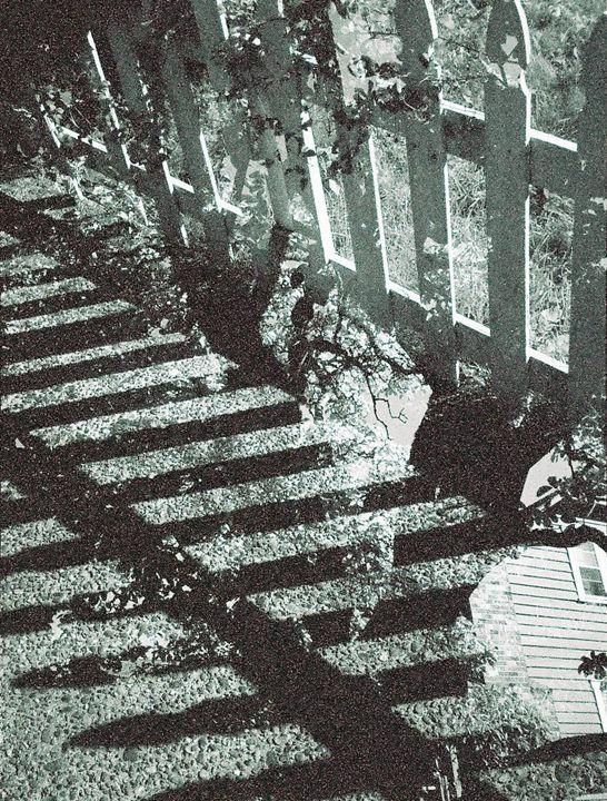 Sidewalk - Juliet Frew