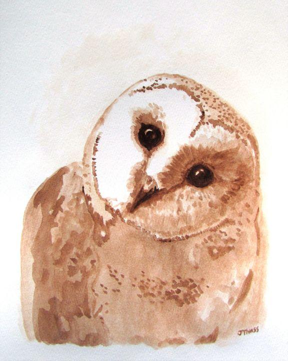 Curious Barn Owl - Jane Thuss Art