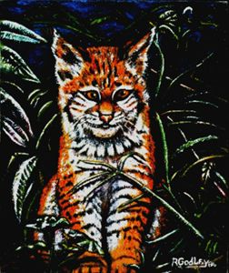'Jungle Kitty'