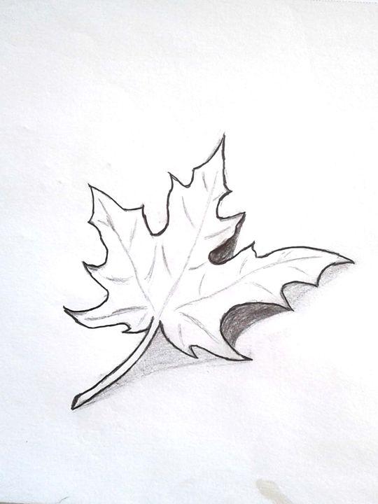 Fall - Shy Drawing