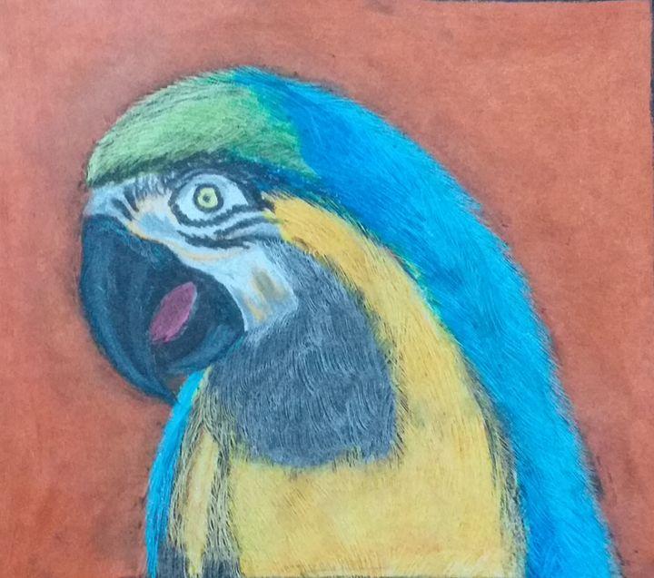 nice parrot - my beautifull paintings