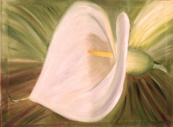 Calla Lily Flowers -  Bumar1