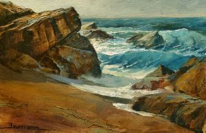 Point Lobos Carmel study on location - Stefan Baumann
