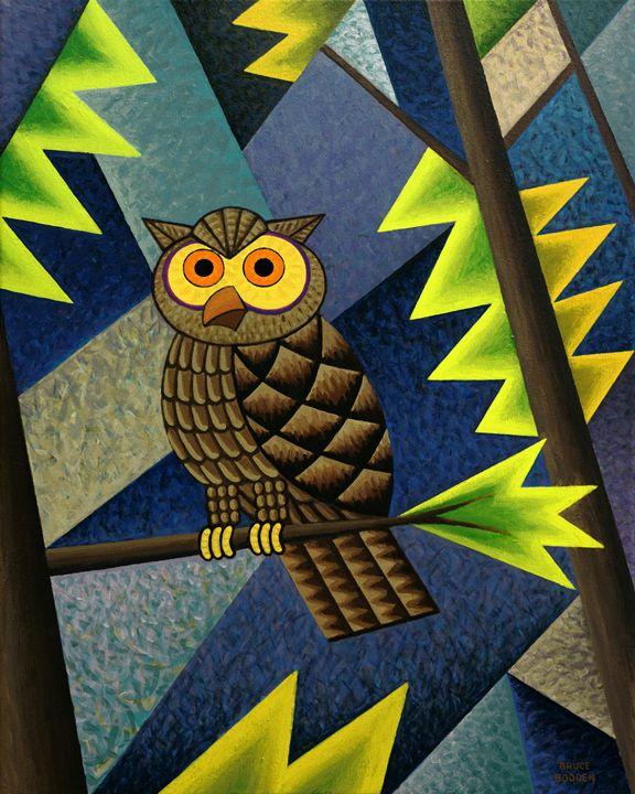 Owl - Bruce Bodden