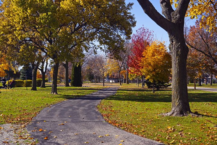 The Path At Jefferson Park - Bruce Bodden