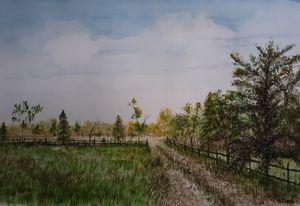 Road to Tilries pond