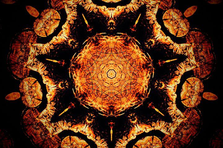 A Wooden Kaleidoscope - The Art of Don Barrett