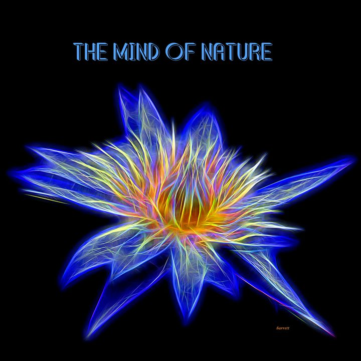 The Mind of Nature - The Art of Don Barrett