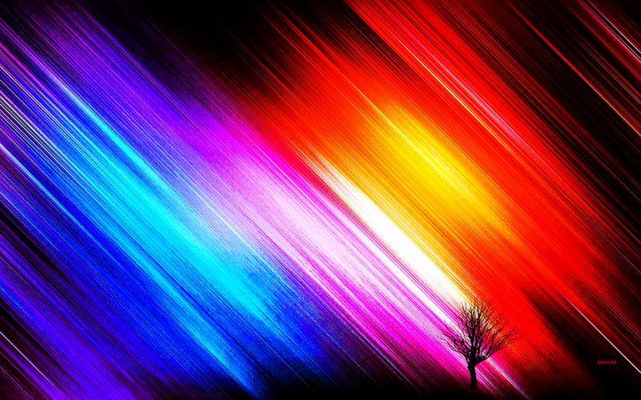 The Last Tree on Earth - The Art of Don Barrett