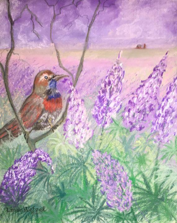 Bluethroat with Lupines - Linda Wetzel Fine Art