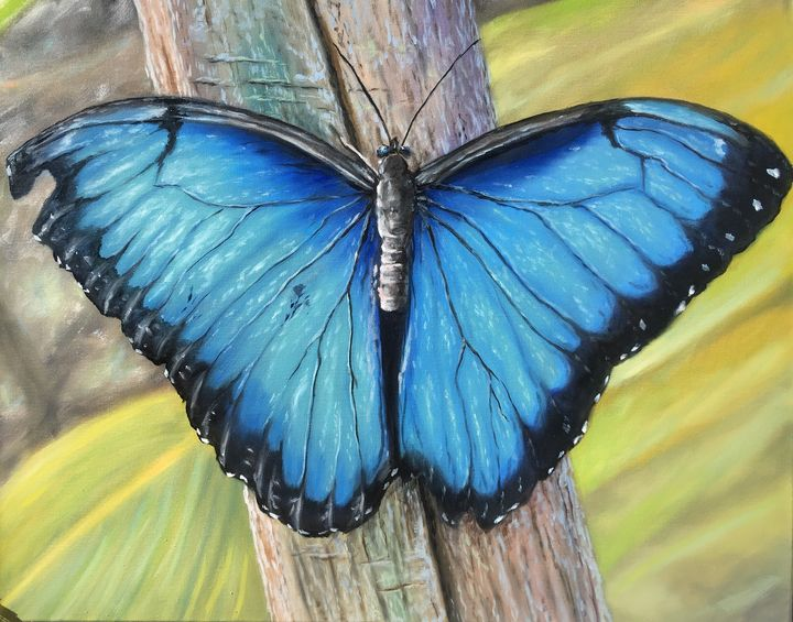 Blue monarch butterfly oil painting - Sunscapes Art by Joseph Cantin