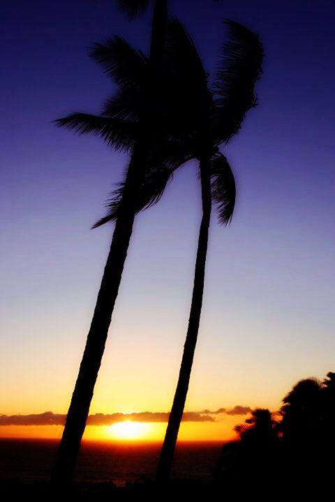 Maui Sunset - Chuck Redick