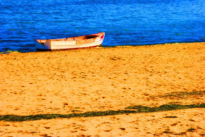 Beached - Chuck Redick