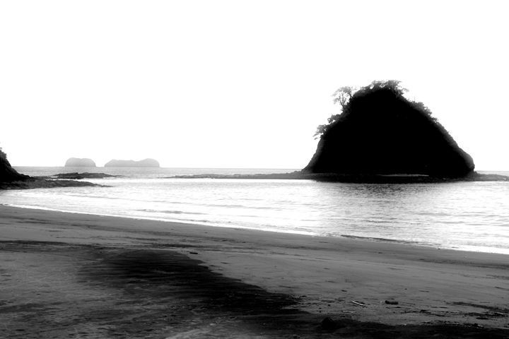 Costa Rican Morning - Chuck Redick