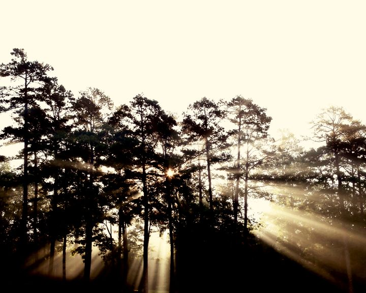 Camp Sunrise - Chuck Redick