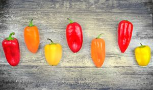 capsicums background bell peppers - FineArt Italia